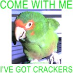 I've Got Crackers