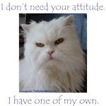 Monster Attitude