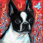 Portrait of a smiling Boston Terrier