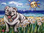 Happy Daisy Bulldog under the sun