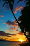 Hawai'i 5