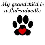 Labradoodle Grandchild