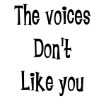 Voices Don't Like You