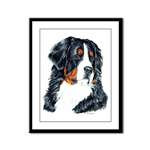 Elegant Bernese Mountain Dog Products & Gifts
