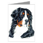 Bernese Mountain Dog Note Cards or Post Cards