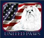 Maltese United Paws USA Flag Style
