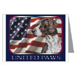 German Shorthaired Pointer Post Cards Note Cards