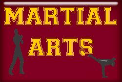 Martial Arts T-shirts and gifts.