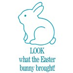 Look Easter Bunny Brought Blue