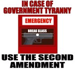 Second Amendment Emergency T-shirts & Gifts