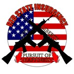 Red State Insurgency