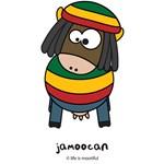 jamoocan