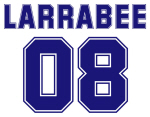 Larrabee 08