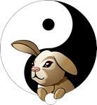 Yin Yang Bunny