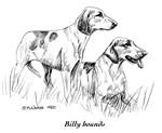 Billy Hound (Montambeuf)