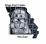 Dogs Can't Vote. You Can.