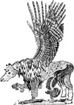 Hawkwing Hippogriff