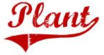 Plant (red vintage)