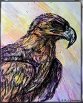Hawk, wildlife art