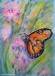 Monarch butterfly! Nature art,