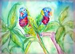 Rainbow Lorikeet! parrot, bird art!