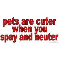 Pets Are Cuter