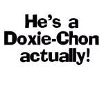 Doxie-Chon