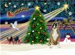CHRISTMAS MAGIC<br>With Boxer (#1)