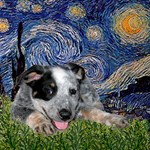 STARRY NIGHT<br>With an Australian Cattle Dog Pup