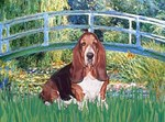 LILY POND BRIDGE<br>& Basset Hound