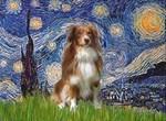 STARRY NIGHT<br>& Australian Shepherd