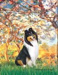 SPRING<br>& Tri Color Collie