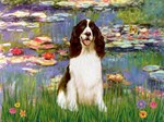 LILIES 2<br>& English Springer Spaniel (Liver)