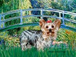 LILY POND BRIDGE<br>& Yorkshire Terrier