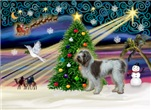 CHRISTMAS MAGIC<br> & Italian Spinone #13