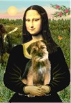 MONA LISA<br> &  Border Terrier