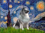 STARRY NIGHT<br>& Keeshond