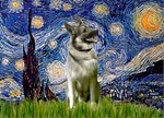 STARRY NIGHT<br>& Norwegian Elkhound