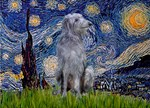 STARRY NIGHT<br> & Scottish Deerhound
