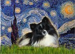 STARRY NIGHT<br>& Pomeranian (BW)