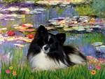 WATER LILIES<br>& Pomeranian (BW)