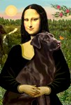 MONA LISA<br>& Chocolate Labrador Retriever
