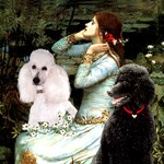 OPHELIA <br> & 2 Poodles