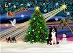 CHRISTMAS MAGIC<br>& Border Collie