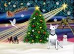 CHRISTMAS MAGIC<br>& Bull Terrier