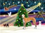 CHRISTMAS MAGIC<br>& Greyhound