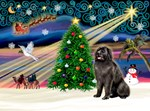 CHRISTMAS MAGIC<br>& Newfoundland