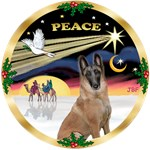 CHRISTMAS DOVE<br>& Belgian Malinois