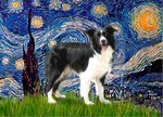 STARRY NIGHT &<br>Border Collie (Z)