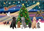 CHRISTMAS MAGIC<br>Six Poodles